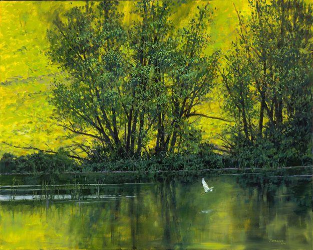 large-Perkins_Doc's Pond